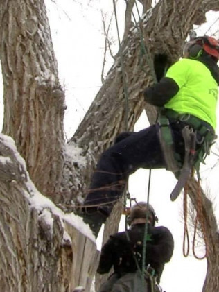 man working in snow to remove tree